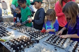 Children plant seeds in the Children's Garden and Outdoor classroom during MLK day of Service