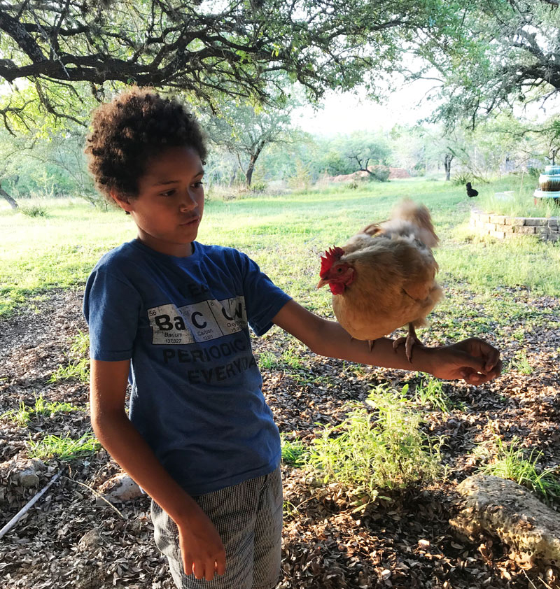 boy with chicken balanced on arm